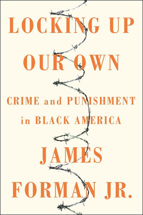 Locking Up Our Own book cover